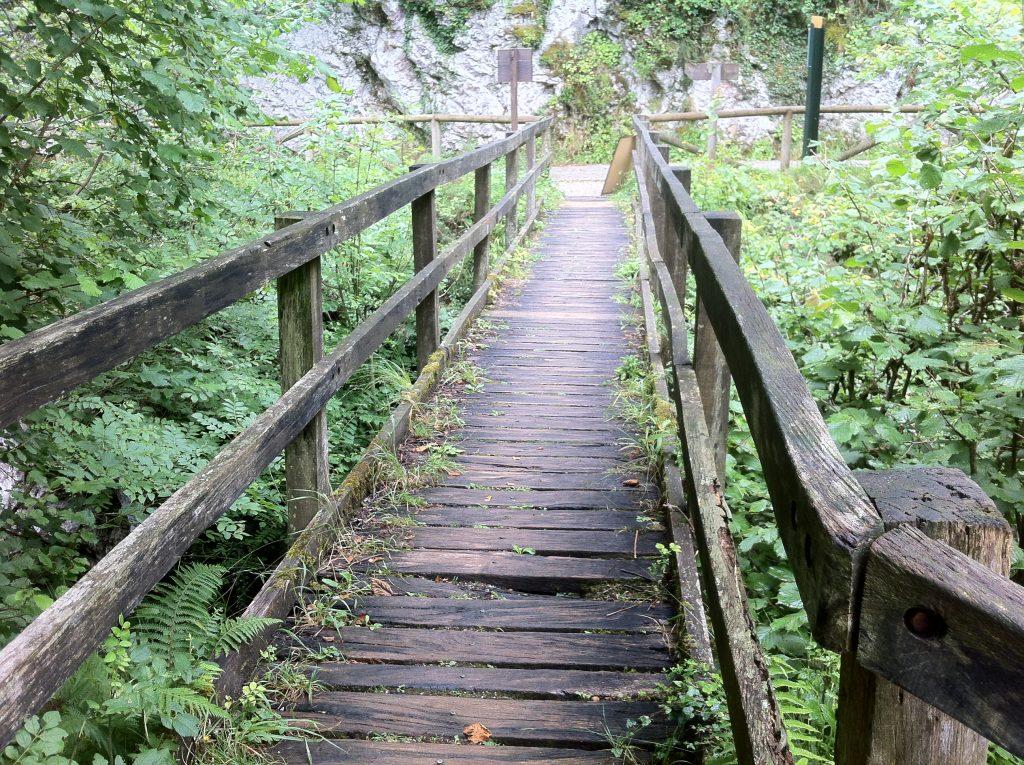 Puente Ruta del Alba.